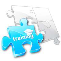 Training Internship